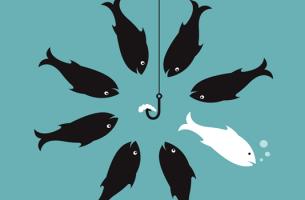 反論する白い魚