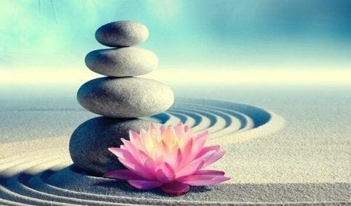 あなたの人生を変える禅の7つの戒