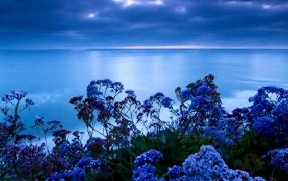 ストレス軽減色:青