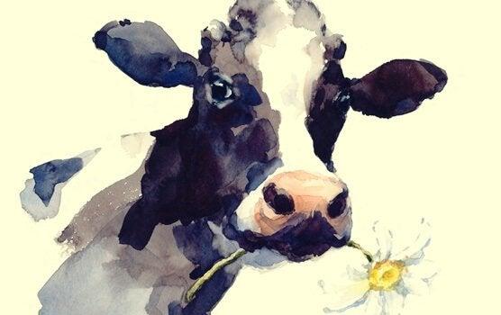 デイジーをくわえる牛