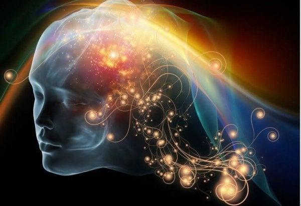 意識のある脳