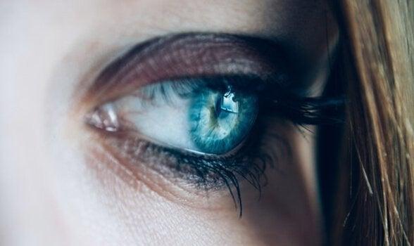 悲しげな青い目