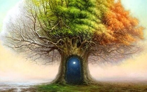ドアのある木