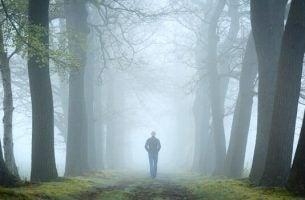 森を歩く人
