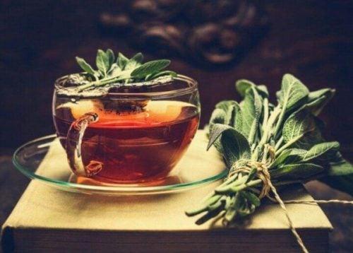 サルビア茶