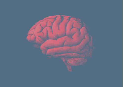 脳はなぜ老いていくのか?遺伝子にある答え