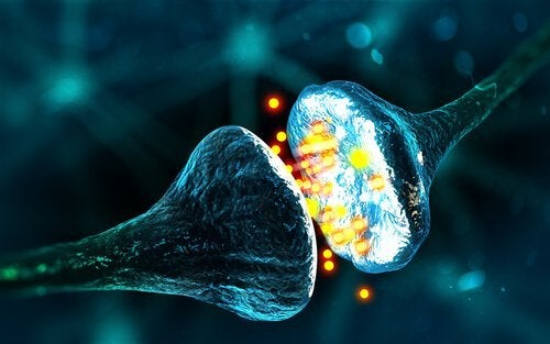 GABA:平安とリラクゼーションの神経伝達物質