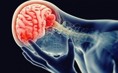 神経炎症、うつの炎症仮説