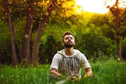 森で瞑想する男性