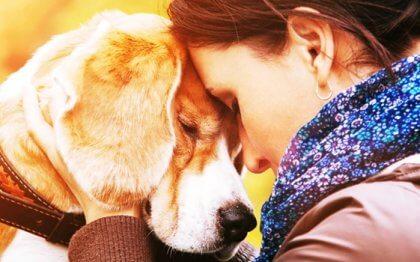 人が動物を愛するようになった理由