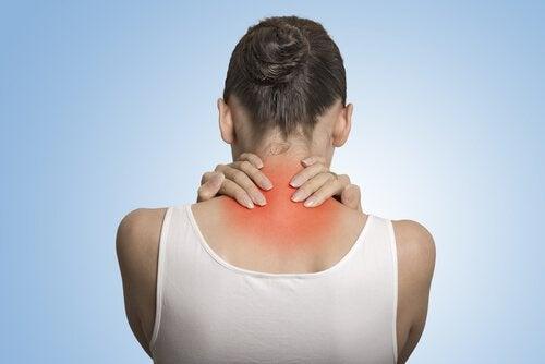 線維筋痛症とプロバイオティクスの関係とは?