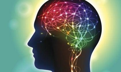アナンダミド:幸せに影響のある神経伝達物質