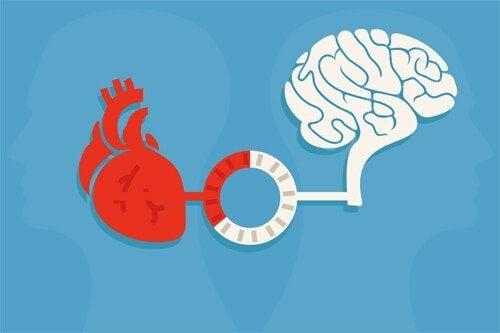 理性と感情:良い決断を生み出すバランス