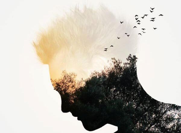 頭で鳥が飛ぶ
