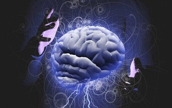 脳と自閉症