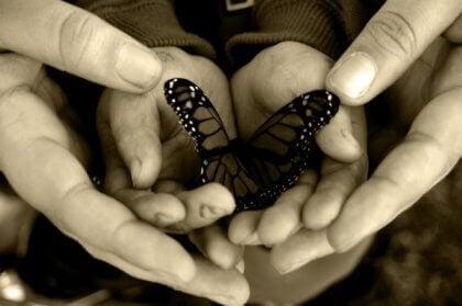 本当の優しさは世界共通の言葉