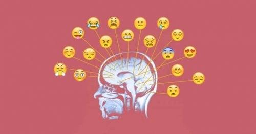 感情の意識