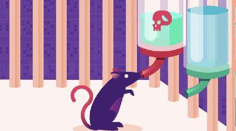 ネズミの実験
