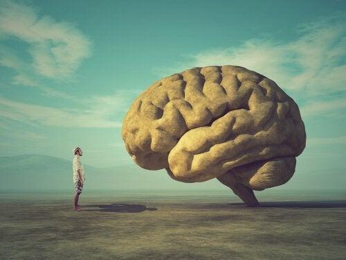 脳に向き合う人