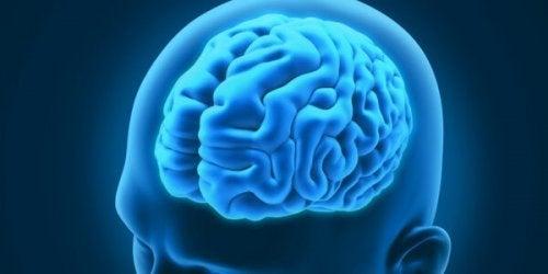 3つの興味深い神経疾患