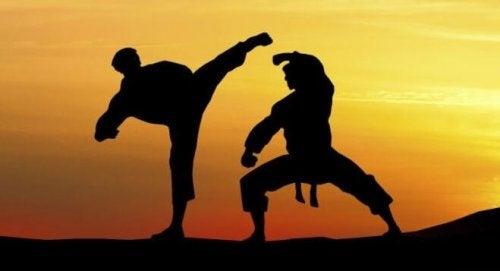 武道の訓練