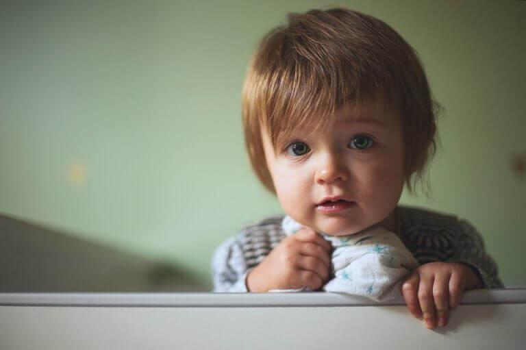 生後9か月:赤ちゃんの発達の節目