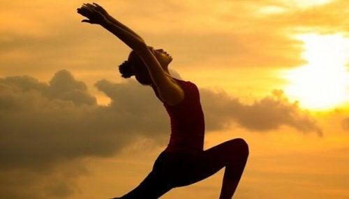 整体:調和と健康の文化