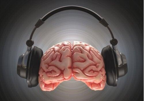 映画のサウンドトラックの脳への影響とは?