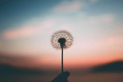 希望とは、望みを叶えるモチベーション