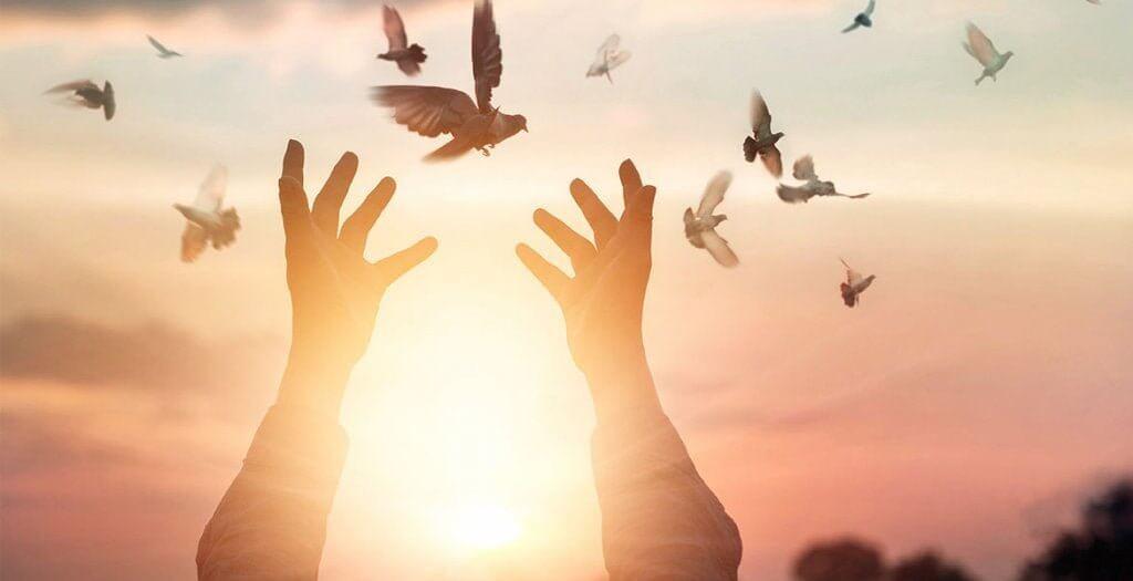 生きがい:人生を輝かせるものとは