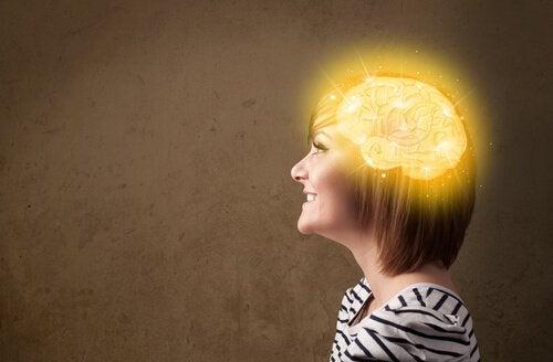 脳 ハピネスゾーン