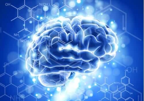 脳神経倫理学の特徴と発展