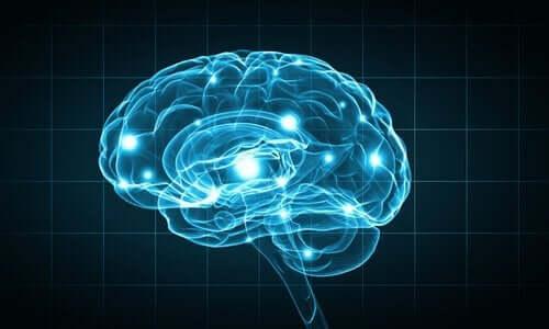 生物心理学における研究方法