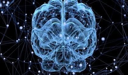 脳が眠りにつくことはあるのか?