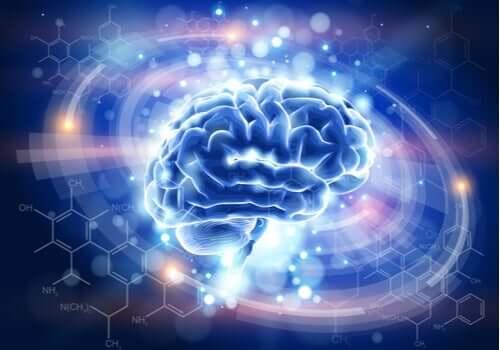 エンケファリン:痛みを緩和する神経伝達物質
