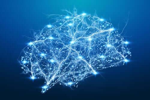 痛みを緩和する 神経伝達物質