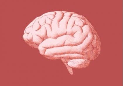 心理言語学