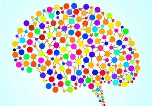これまで分かっていなかった脳の97の領域