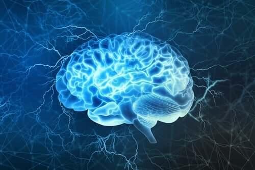 脳の再構築 ブルー・ブレイン・プロジェクト 歴史