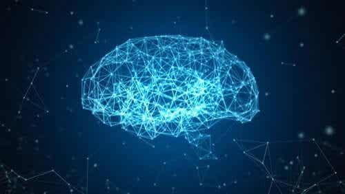 脳の再構築を目指す:ブルー・ブレイン・プロジェクト