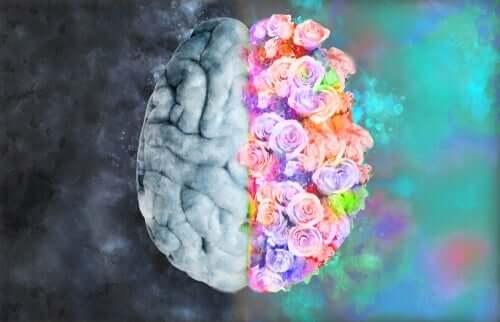神経美学:神経学とアートの融合