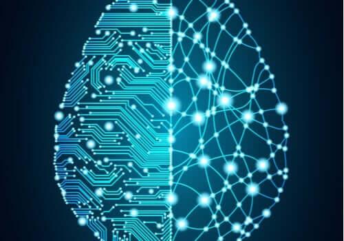 脳の再構築 ブルー・ブレイン・プロジェクト 電子