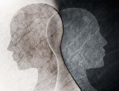 遺伝学と精神分析学の理論:心理性的発達段階