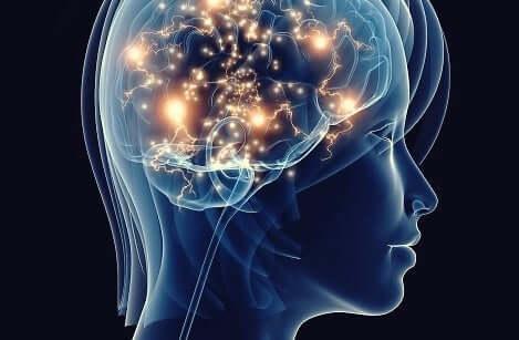 治療されないうつ病がもたらす神経組織への悪影響