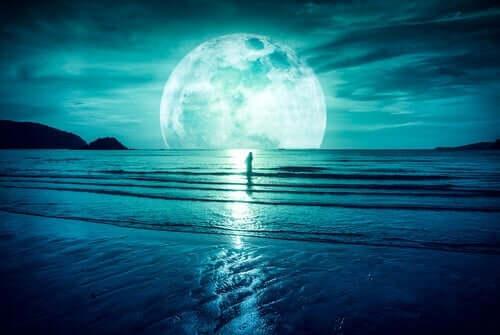 ドナルド・レデルマイヤー 月の魔力