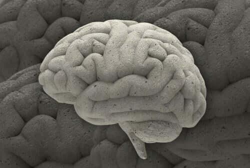 神経科学にまつわる興味深い3つの症例