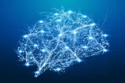 神経科学 興味深い 症例