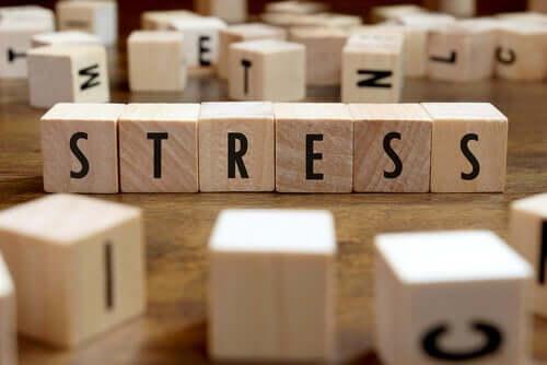ストレス 記憶