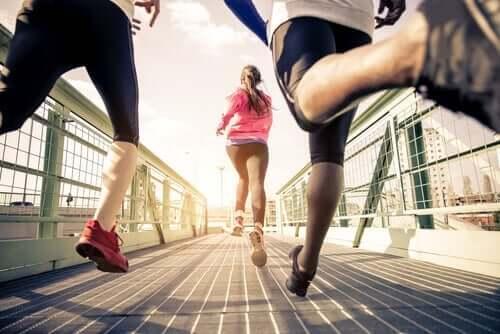 運動が脳に与える影響って?