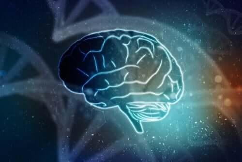 臨床心理学 神経心理学